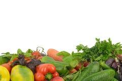 Grönsaker på en vitbakgrund Fotografering för Bildbyråer