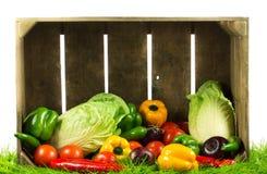 Grönsaker på gröna gras på isolerad sund mat för vit bakgrund arkivbild