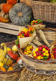 Grönsaker på marknaden, Italien Arkivbild