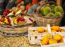 Grönsaker på marknaden, Italien Royaltyfria Bilder