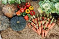 Grönsaker på rice-husk royaltyfria bilder
