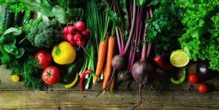 Grönsaker på träbakgrund Bio sunda organisk mat, örter och kryddor Rått och vegetariskt begrepp ingredienser arkivbild