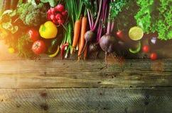 Grönsaker på träbakgrund Bio sunda organisk mat, örter och kryddor Rått och vegetariskt begrepp ingredienser royaltyfria foton