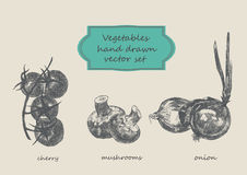 Grönsaker räcker den utdragna uppsättningen Körsbär champinjoner, lök Royaltyfri Foto