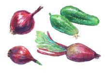 Grönsaker räcker utdraget Arkivfoton