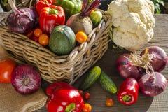 Grönsaker skördar i korg Arkivfoton