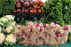 Grönsaker som är till salu på en bondes marknad Arkivfoto