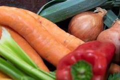 Grönsaker som gör en läcker soppa royaltyfri bild