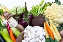 Grönsaker som isoleras på en vit bakgrund Royaltyfri Bild