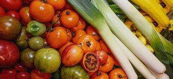 Grönsaker tomater av olika variationer gulnar, gör grön, rött, svart och zucchinin, purjolök vegetarianism Närbild Royaltyfria Foton