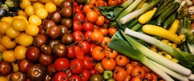 Grönsaker, tomater av olika variationer och zucchini, fänkål, purjolök Begreppet av sunt äta, råkost, bantar Fotografering för Bildbyråer