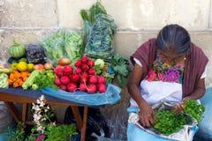 Grönsakförsäljare i Mexico Royaltyfri Foto