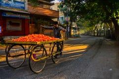 Grönsakförsäljarecykel på gator Royaltyfri Foto