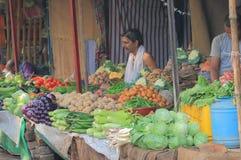 Grönsakgatamarknad Varanasi Indien Royaltyfri Fotografi