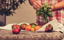 Grönsaklögn på en vide- tabell arkivbilder