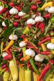 Grönsakmarknad Royaltyfri Fotografi