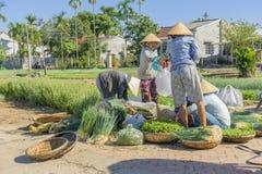 Grönsakmarknad i den Tra Que byn nära Hoi An Royaltyfri Bild