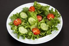 Grönsaksallad Arkivbild
