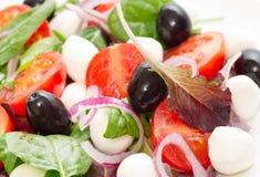 Grönsaksallad med den mini- mozzarellaen Fotografering för Bildbyråer