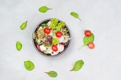 Grönsaksallad med Fetaost Royaltyfri Foto