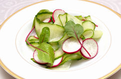Grönsaksallad med gurkor och rädisan royaltyfri foto