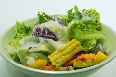 Grönsaksallad med majonnäs Arkivfoto