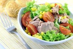 Grönsaksallad med tonfisk Fotografering för Bildbyråer