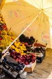 grönsakshandlare Fotografering för Bildbyråer