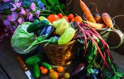 Grönsakskördstilleben arkivfoto