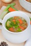 Grönsaksoppa med morötter, lök, ny krydda, grönsallat Royaltyfri Bild