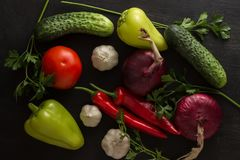 Grönsaksortiment av gurkor, löktomater med vitlök och bitter och söt peppar Royaltyfria Bilder