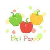 Grönsakspansk pepparvektor Arkivfoton