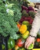 Grönsakställning på i stadens centrum San Jose Farmers ' marknad Royaltyfria Bilder