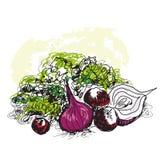 Grönsakstilleben Royaltyfri Foto