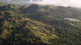 Grönsakterrass under ett berg royaltyfri fotografi