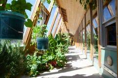 Grönsakträdgård inom Earthship ett hållbart hus nära Taos i nytt - Mexiko, USA royaltyfria foton