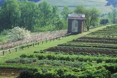 Grönsakträdgård och paviljong på Monticello, hem av Thomas Jefferson, Charlottesville, Virginia Arkivbilder