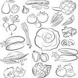 Grönsakuppsättning Arkivbild