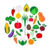 Grönsakuppsättning i cirkel Royaltyfri Fotografi