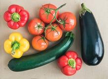 Grönsakuppsättning: mogna tomater, paprika, zuccini och ett aggplant Royaltyfria Bilder