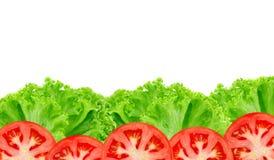 Grönsallat med tomaten på vit Royaltyfri Bild