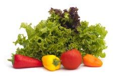 Grönsallat och grönsaker Royaltyfria Foton