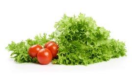Grönsallat och tomat Royaltyfria Bilder