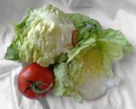 Grönsallat och tomat på en torkdukehandduk Royaltyfri Bild