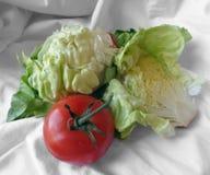 Grönsallat och tomat på en torkdukehandduk Royaltyfria Foton