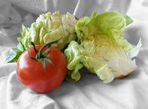 Grönsallat och tomat på en torkdukehandduk Arkivbild