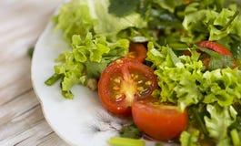 Grönsallat och tomater Arkivfoton