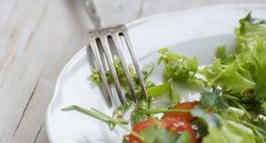 Grönsallat och tomater Royaltyfri Foto