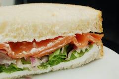 grönsallatlaxsmörgås royaltyfri fotografi