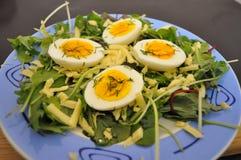 Grönsallatsidor med ägg och ost royaltyfri bild